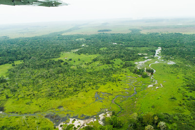 Rainforest Bai, a swampy grassy area, in Odzala-Kokoua National Park on approach to Odzala Wilderness Mboko airstrip.