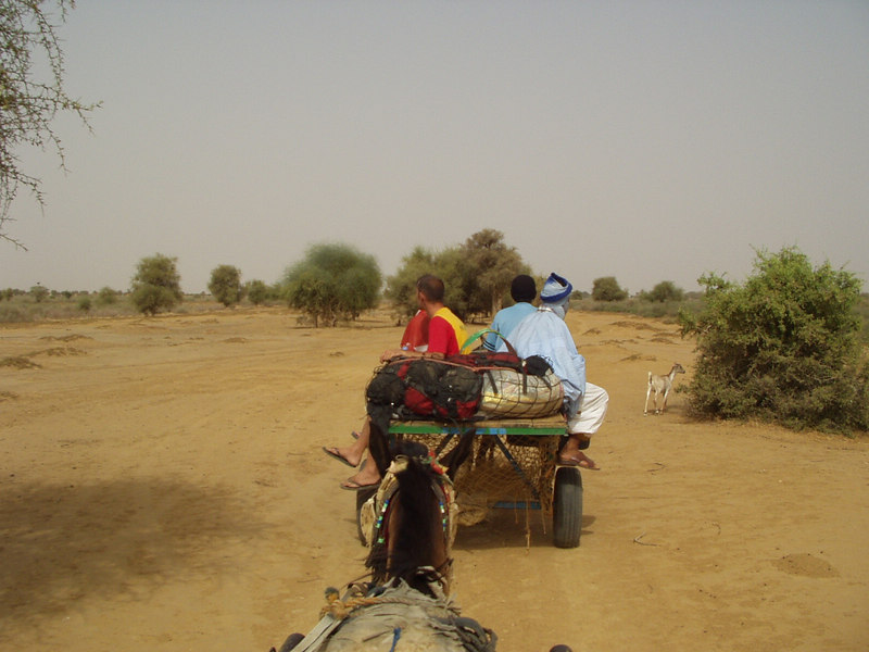On a horsecart crossing from Boghe to Dodel, Senegal.