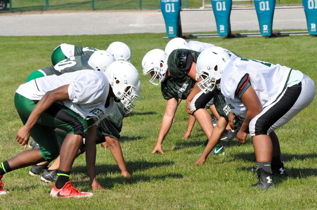 . West Bloomfield is coming off of a 6-5 season in 2016 that included a berth in the postseason. (Photos by Dan Fenner/The Oakland Press)