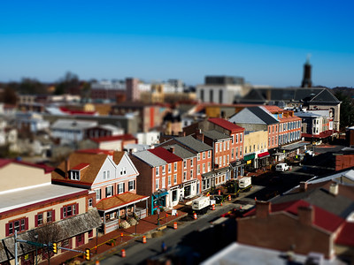 Miniature West Chester