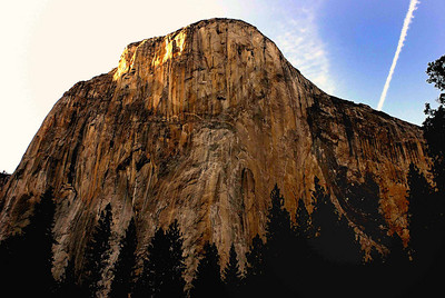 El Capitan from the Yosemite meadows
