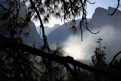 Yosemite, Sequoia and the Coast
