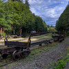 Train - Outside Telegraph Cove, Vancouver Island, British Columbia, Canada