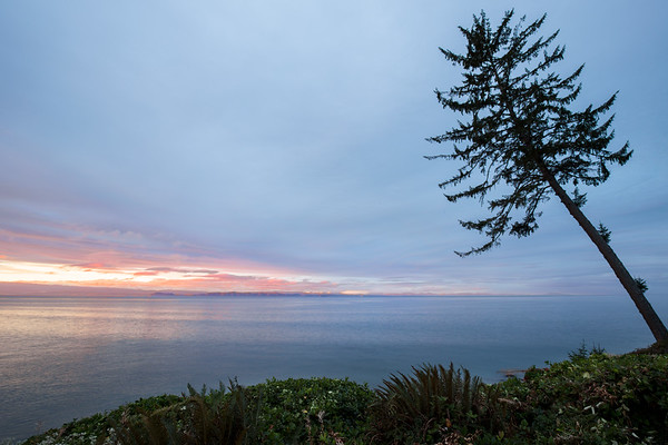 West Coast Seascape - Fossil Bay, Vancouver Island, British Columbia, Canada