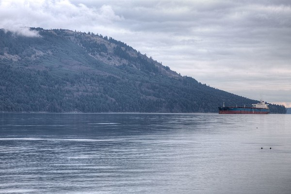 Commercial Ships Moored - Vancouver Island, BC, Canada