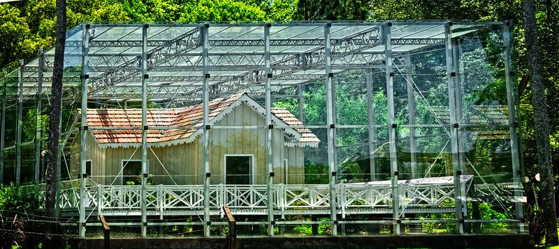 Tigre -  Glass House-1