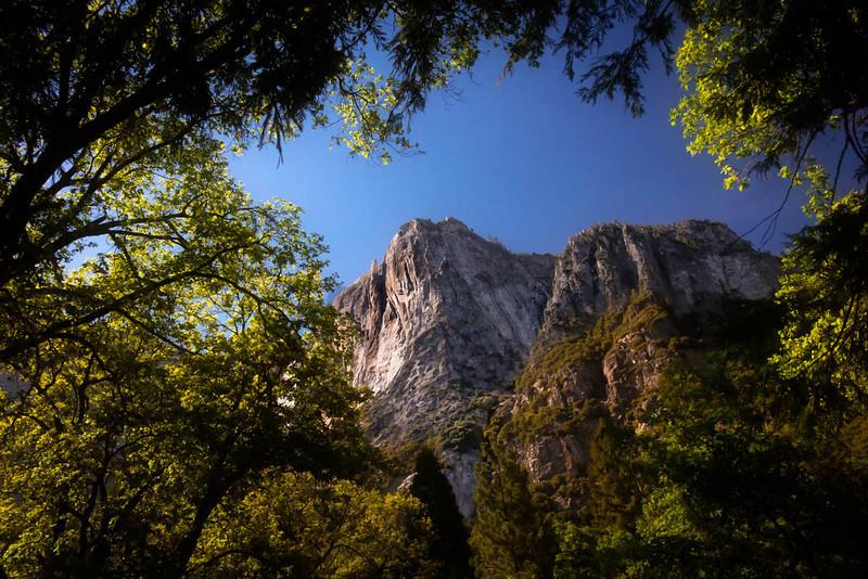Trees Framing Mountain-