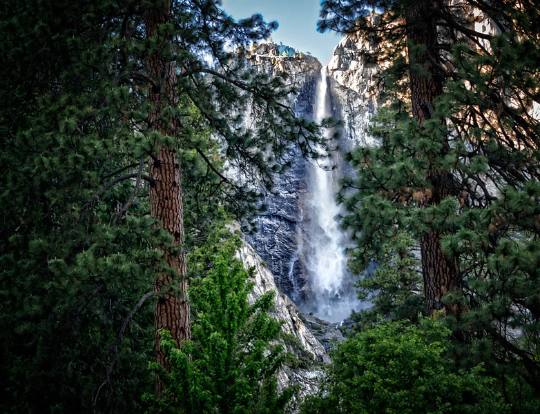 Trees Framing Waterfall-