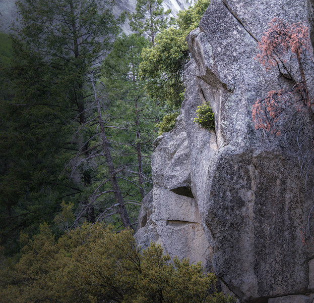 Yosemite - Face in the Mountain 2-