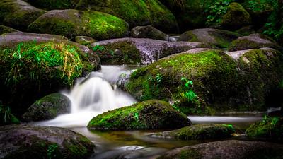 The Gentle Stream