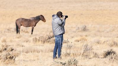 Jason Cameron shooting wild horses