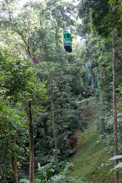 St. Lucia - Rainforest Cable Tram