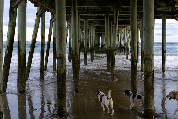 Under the boardwalk at Old Orchard Beach, Maine, US
