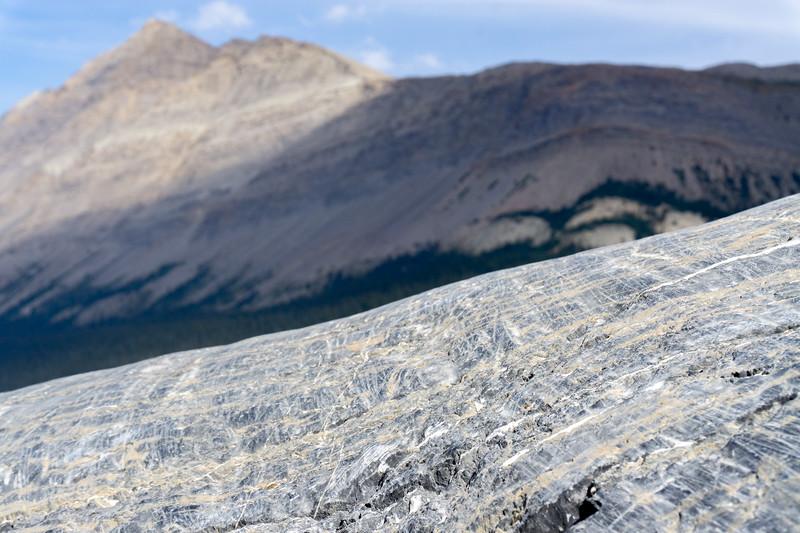 Glacier tracks, Jasper National Park, Alberta, Canada