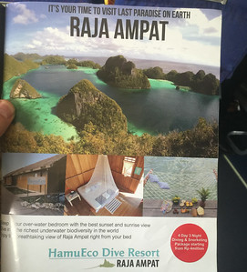 Then off to our first birding spot - Waigeo Island - the famous Raja Ampat