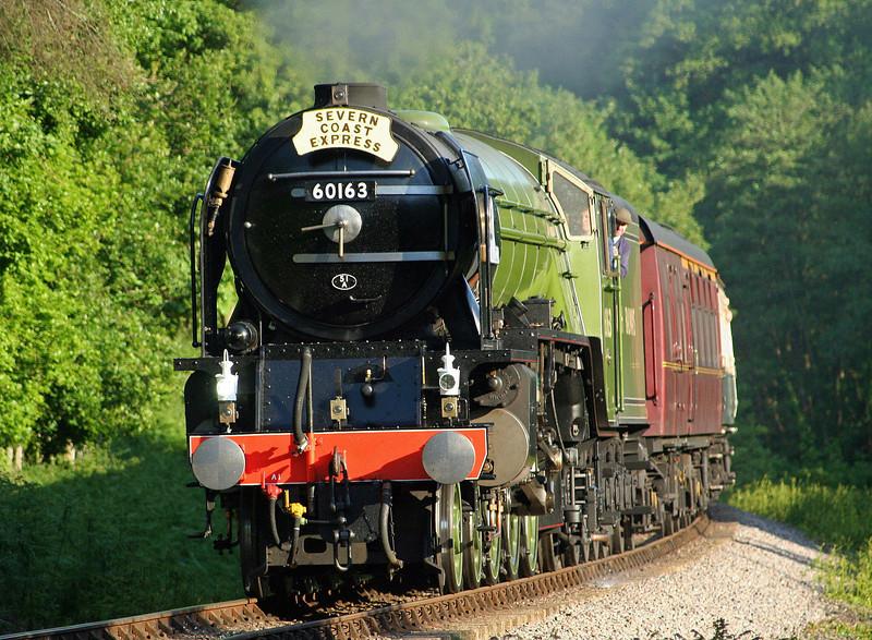 60163, Bristol-Minehead, Severn Coast Express, Stones Wood, near Crowcombe Heathfield, 30-5-09.