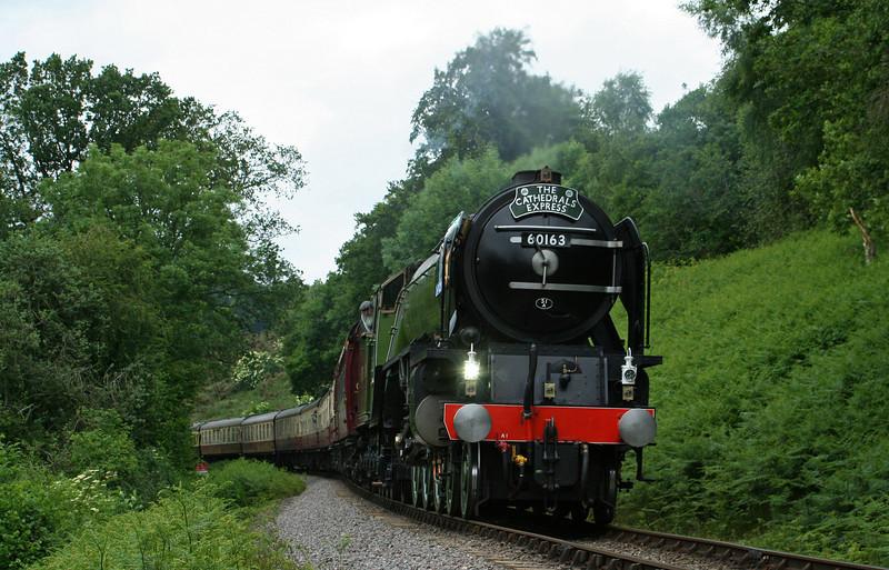 60163, 16.30 Minehead-London Victoria, The Cathedrals Express, Stones Wood, near Crowcombe Heathfield, 18-6-09.