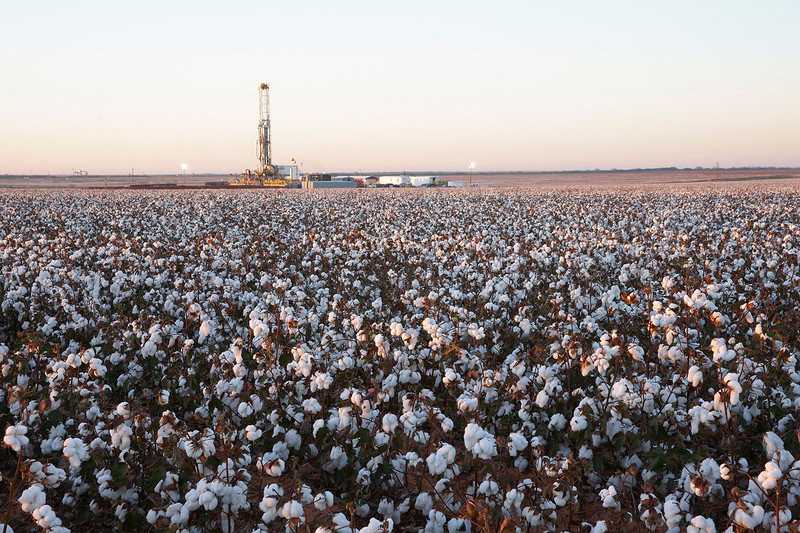 Drilling Rig in Cotton Field