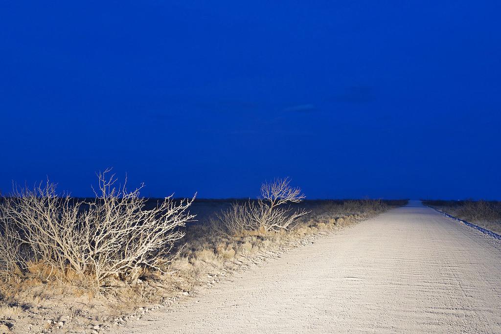 Night Road, New Mexico