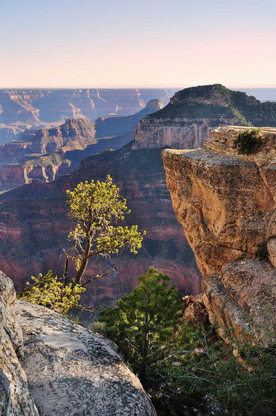 Grand Canyon North Rim, Arizona.