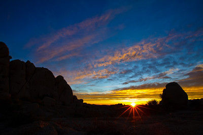 Joshua_Tree_Sunrise-008-1235332616-O