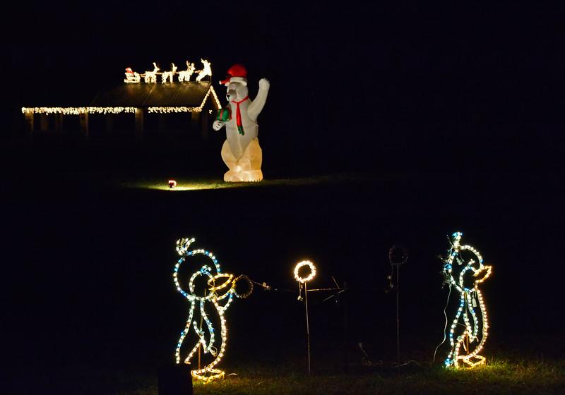 ChristmasLightsCoonskinParkKanawhaCoWV-2015-sjs-005