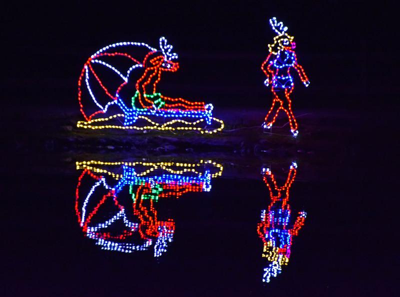 ChristmasLightsCoonskinParkKanawhaCoWV-2015-sjs-042