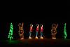 ChristmasLightsCoonskinParkKanawhaCoWV-2015-sjs-006