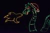 ChristmasLightsCoonskinParkKanawhaCoWV-2015-sjs-023