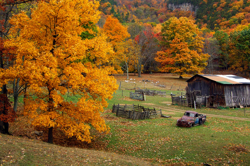 Farm scene near Smoke Hole Canyon in Pendleton Co, WV.