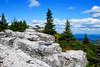 Bear Rocks area of the Dolly Sods Wilderness in Grant Co, WV.