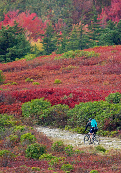 Backpacking Mountain Biker on Dolly Sods in Tucker Co, WV.