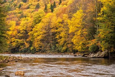 Cheat River Fall