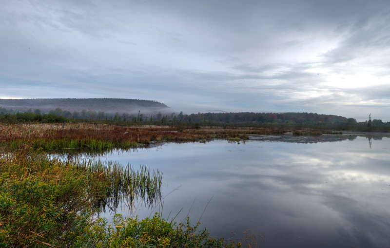 Beaver pond Canaan Valley on overcast day......................To purchase print or digital file e mail DFriend150@gmail.com