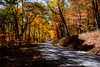 Country roads in the Fall