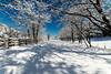 Snow covered rail trail