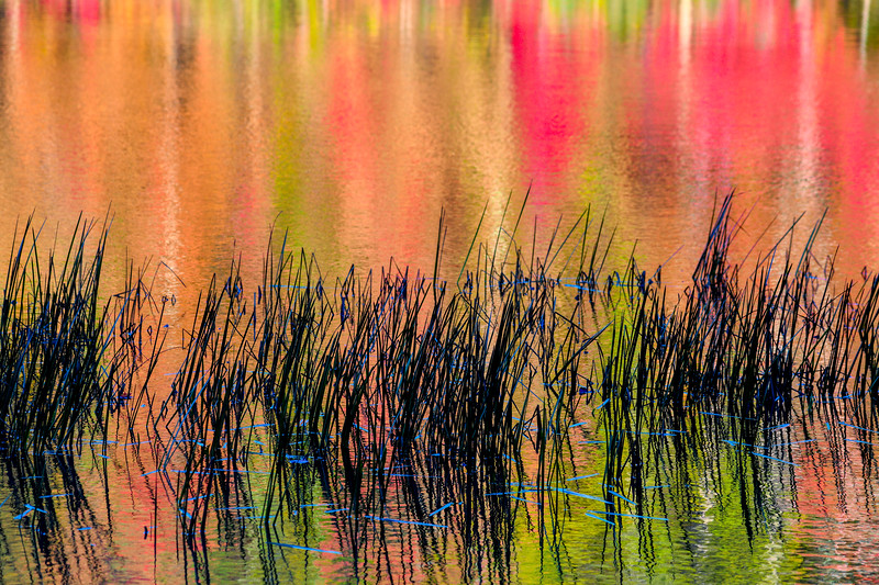 Colorful reflections in the water in the Fall