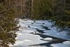 "Deer crossing frozen Blackwater River......................................................to purchase - <a href=""http://bit.ly/1DERNV3"">http://bit.ly/1DERNV3</a>"