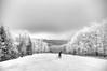 Lone skier on mountain