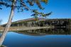 Calm Spruce lake