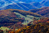 Fall scene from Spruce Mountain