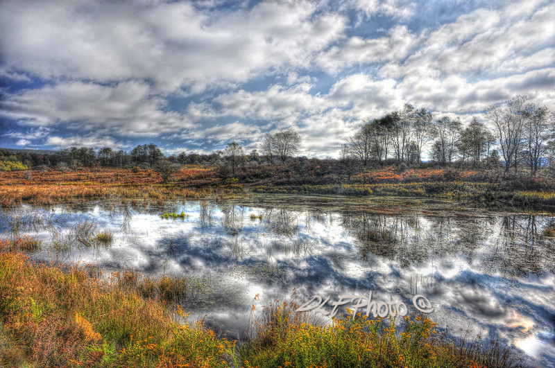 """Cloud reflections in beaver pond Canaan Valley<br /> <br /> to purchase - <a href=""""http://dan-friend.artistwebsites.com/featured/cloud-reflections-in-beaver-pond-canaan-valley-dan-friend.html?newartwork=true"""">http://dan-friend.artistwebsites.com/featured/cloud-reflections-in-beaver-pond-canaan-valley-dan-friend.html?newartwork=true</a>                                                             .............................................pixel paintography"""