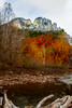 Fall scene with stream and Seneca Rocks in the background