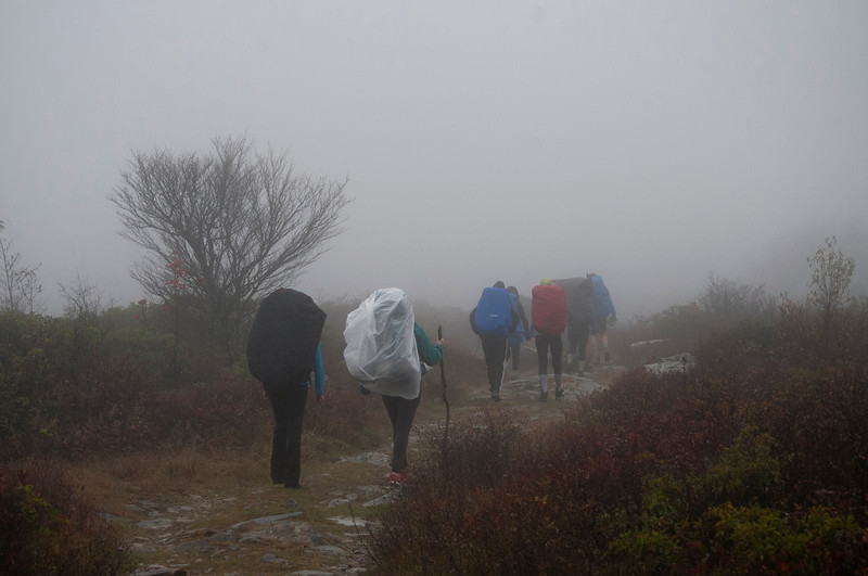 Hikers going into the fog at Dolly sods ...........................................Prints or digital files can be purchased by e mailing DFriend150@gmail.com