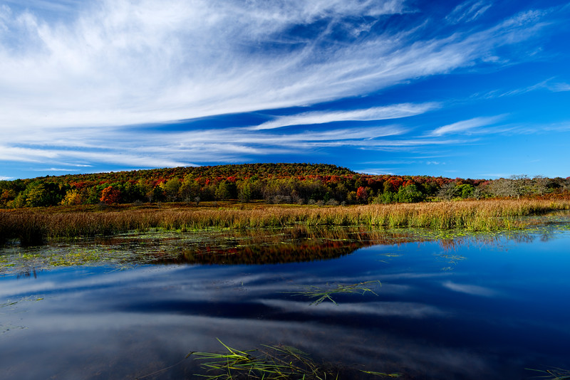 """Early fall beaver pond Canaan Valley...............................to purchase - <a href=""""http://bit.ly/1xvV4m4"""">http://bit.ly/1xvV4m4</a>"""
