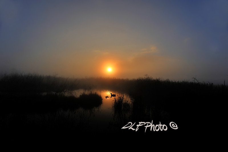 "Sunrise Canaan Valley with ducks on beaver pond<br /> <br /> to purchase - <a href=""http://dan-friend.artistwebsites.com/featured/sunrise-canaan-valley-with-ducks-on-beaver-pond-dan-friend.html?newartwork=true"">http://dan-friend.artistwebsites.com/featured/sunrise-canaan-valley-with-ducks-on-beaver-pond-dan-friend.html?newartwork=true</a>                                                             .............................................pixel paintography"