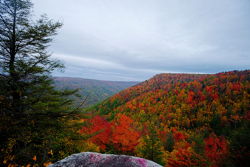"""Fall scene from overlook near Thomas WV............................to purchase - <a href=""""http://bit.ly/1piX3KW"""">http://bit.ly/1piX3KW</a>"""