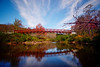 The bridge in the Canaan Valley National Wildlife Refuge................................Prints or digital files can be purchased by e mailing DFriend150@gmail.com