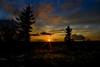 Sunset on Dolly Sods streaming light