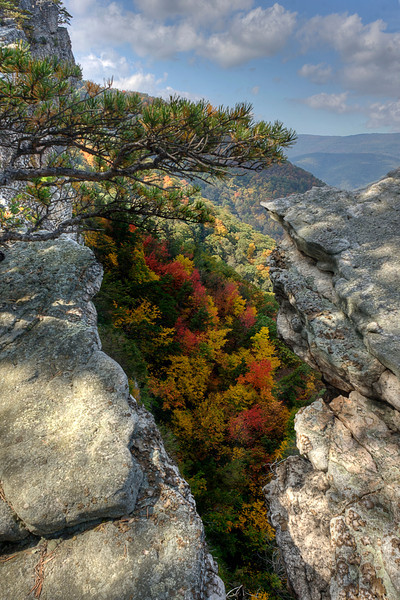 """Fall scene on North Fork Mountain<br /> <br /> to purchase - <a href=""""http://dan-friend.artistwebsites.com/featured/fall-scene-on-north-fork-mountain-dan-friend.html"""">http://dan-friend.artistwebsites.com/featured/fall-scene-on-north-fork-mountain-dan-friend.html</a>                                                             .............................................pixel paintography"""